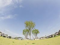 土地や建物の相続には所有権移転登記が必要です